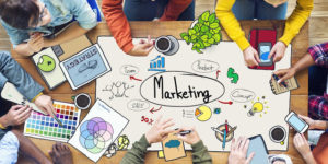 Search Marketing and Lead Generation